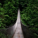 What No One Ever Tells You About Burning Bridges