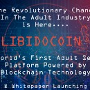 Libidocoin The Future Of Adult Industry