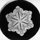 The first photographs of snowflakes revealed unique, 'tiny miracles of beauty'