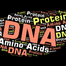 Starting off in Bioinformatics — Turning DNA sequences into Protein sequences