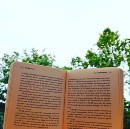 The day I decided to read in a park