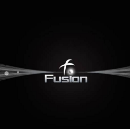 [UPDATED] FUSION ICO: RED FLAGS ONLY, BUT LEGIT ONE