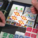 The Allure of Graphic Stamps