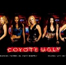 Lessons learned from Coyote Ugly