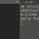 Implementing simple netcat using go
