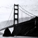 Founder Collective is in San Francisco