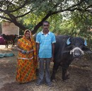 Meet the Farmer Giving New Meaning to 'Milk Money'