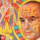 How doing LSD in India melted my brain, for the better.