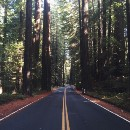 Northern California: From Mighty Redwoods to Breathtaking Coasts