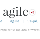 I'd Like You To Know the Definition of Agile…