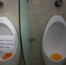 UX in the loo