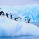 Antarctica: The South Shall Freeze Again