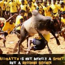 Jallikattu — What is? And Why it should not be banned? And the conspiracy behind the ban.