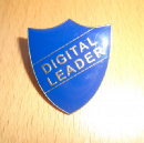 Digital leaders: who are they and what do they need?