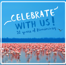 From a meme to a movement: reflections on 20 years of biomimicry
