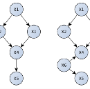 Causal Graph Inference