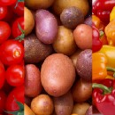 Tomatoes, Potatoes, and Peppers