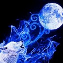 Super Full Wolf Moon, Jan 2018 ~ First Days of the New Year, Emotions Running High