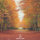 """Oh how we adore fall… An insert from my book """"The Purpose of Singleness""""."""
