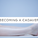 Becoming A Cadaver