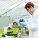 The state of biotech regulations in 2018 — an ag policy expert's perspective