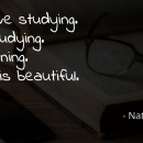 """I don't love studying, I hate studying. I like learning, learning is beautiful."""