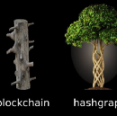 Inside the Distributed Ledger World; Is the Hashgraph Better Than the Blockchain?