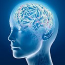 Do you know Neurological Disorder can effect on Epilepsy?