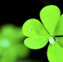 How To Become A Really Lucky Person — A Science-Backed Method To Increase Your Luck Today
