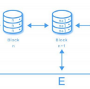 Seele's Neural Consensus Algorithm: the basics