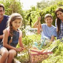 Teaching Kids to be Sustainable — Plant NOW for a Spring Harvest!!