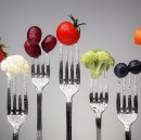 The Fast Diet: Some Pros and Cons