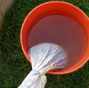 Manure Tea in Your Victory Garden: Sustainable Practices for Flourishing Growth