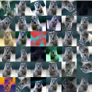 Image Augmentation for Deep Learning using Keras and Histogram Equalization