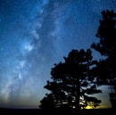 What light pollution costs us every night