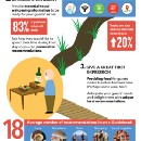 How To Become a 5-Star Host (Infographic)