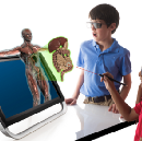 Rules of Engagement: Teaching in a Virtual World