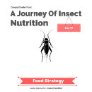 90 Days Of Edible Insects
