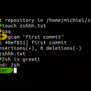 Oh-My-Zsh! Made for CLI Lovers