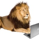 """""""Until the Lion Learns How to Write, Every Story will Glorify the Hunter"""""""