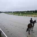 The Glory Of Belmont And The Triple Crown
