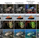 Colorising Black & White Photos using Deep Learning