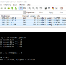 Beware of Windows 10 DNS resolver and DNS Leaks