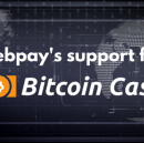 Zebpay's Support For Bitcoin Cash
