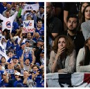 How the Cubs Can Help Democrats Win Elections