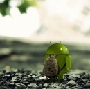 Flying Solo with Android Development