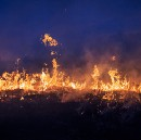 Preserving the Prairies By Burning Them Down