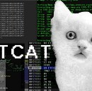 Packet Manipulation with netcat and scapy