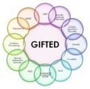 Intro | My life as a Gifted Adult