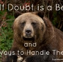 Self Doubt is a Bear and 6 Ways to Handle Those Bears